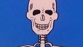 a-csontvaz-es-a-csontok