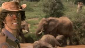 elefantok-gyerektv
