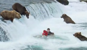 grizzly-medve-gyerektv