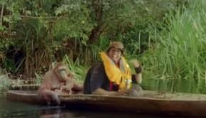 orangutanok-gyerektv