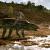 postosuchus-es-a-fog-gyerektv